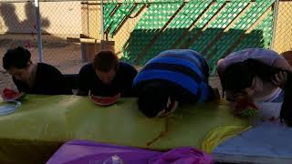 Watermelon contest. Who will win? Watch the video.