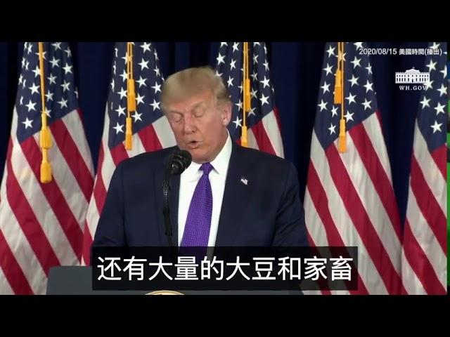 川普:中國在大量購買農產品,但他們這麼做只是為了穩住我