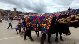 Carnaval Huamachuquino 10
