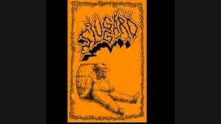 Sluggard - With The Flies
