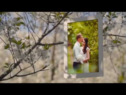 After effects template classy wedding pack download