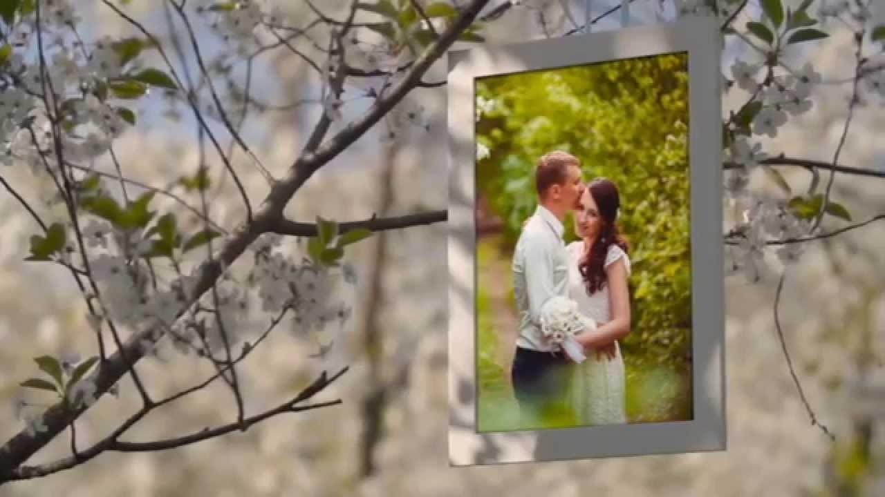 Wedding Slideshow Templates Free Boatjeremyeatonco - Ae slideshow template free