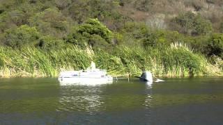 Lake San Marcos Boat Rescue