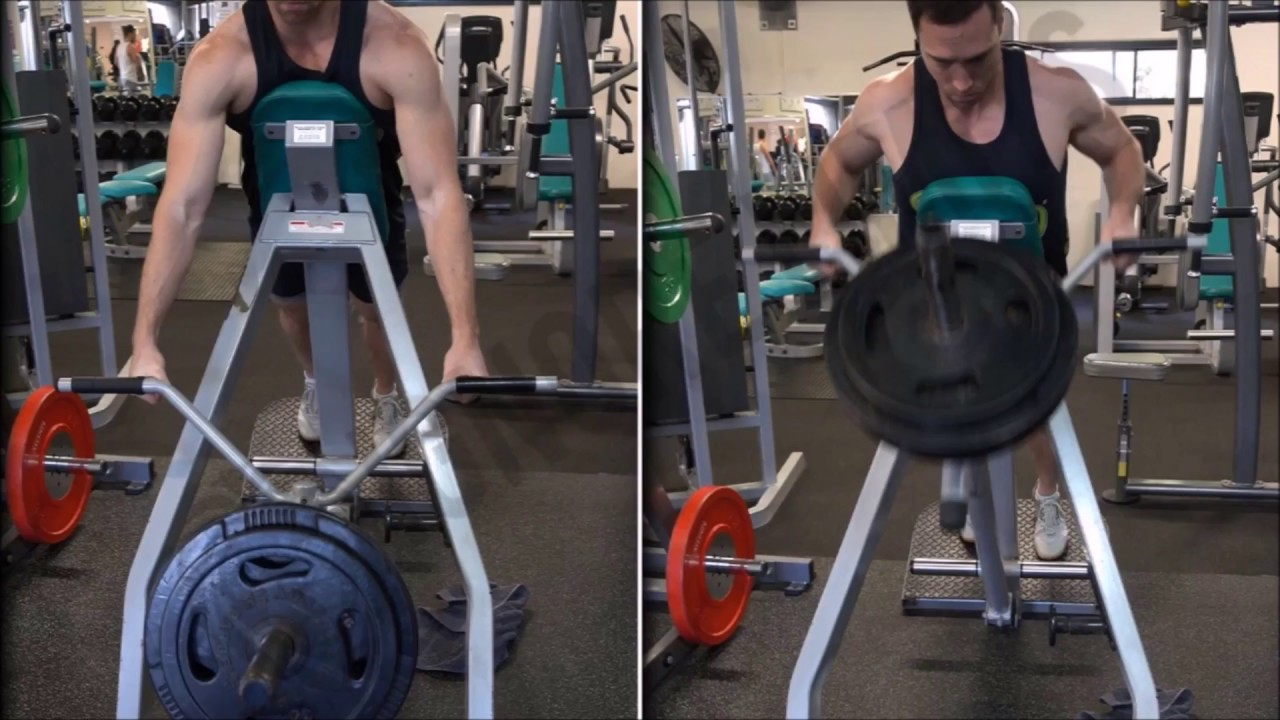 chest supported t bar row