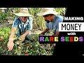 PROFITABLE Market Gardening with HEIRLOOMS