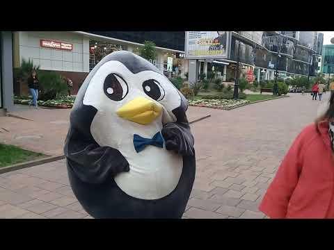 33 Пингвина лучшее мороженое на сливочках)