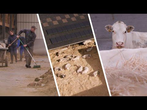 Portraits d'éleveurs - Les élevages de demain
