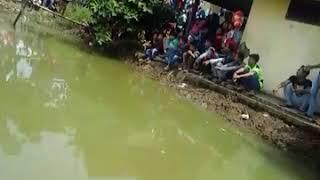 Adegan panas di atas air empang 2017