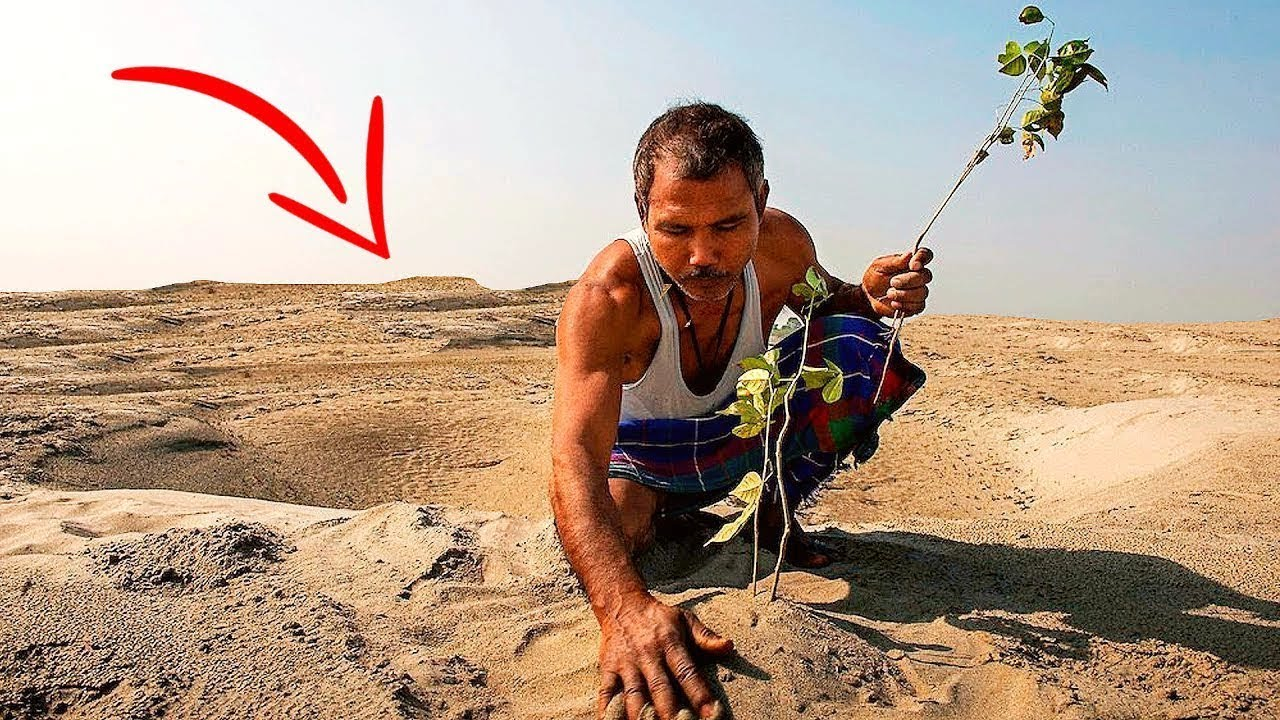 People laughed at him when he planted trees in a DESERT! But later they were all SHOCKED...