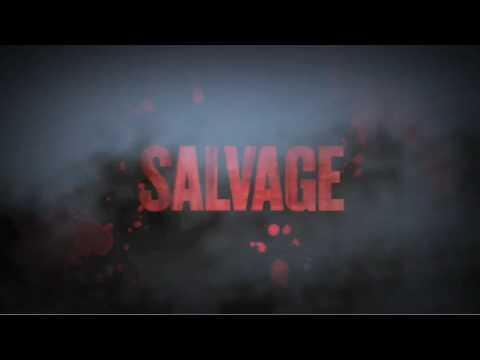 Salvage Trailer