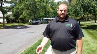 Recognizing lawn drought stress in East Brunswick, NJ.