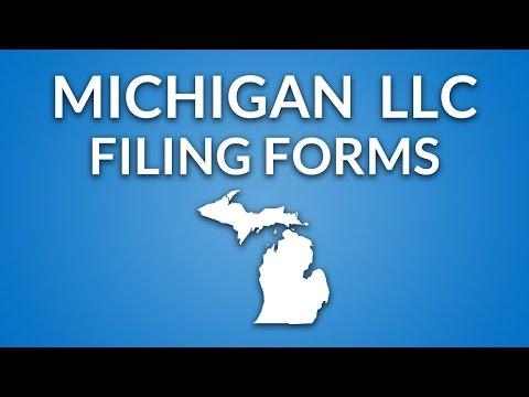 Michigan LLC - Formation Documents
