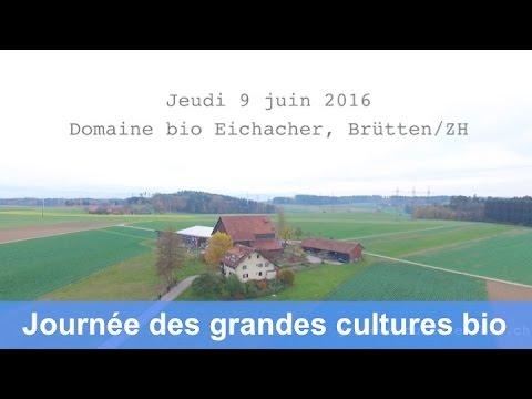 Avant-première : Journée suisse des grandes cultures bio le 9 juin 2016 à Brütten ZH (jan 2015)
