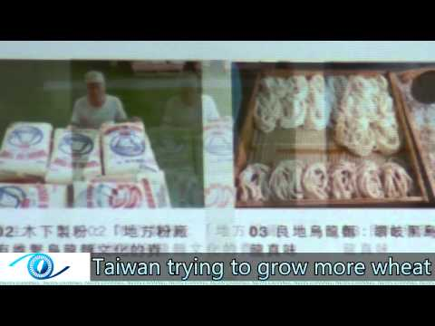 Taiwan trying to grow more wheat