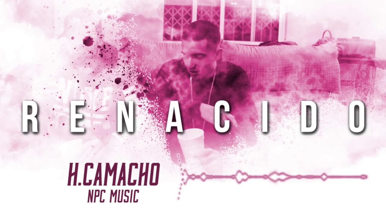 Npc Musik