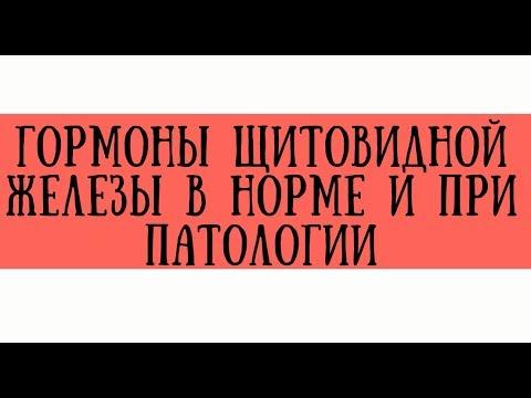 Гормоны щитовидной железы в норме и при патологии - meduniver.com