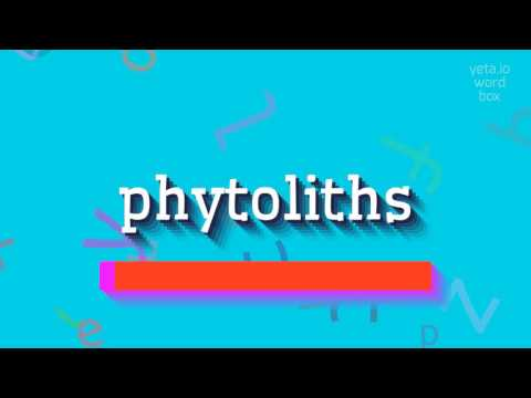 "How to say ""phytoliths""! (High Quality Voices)"