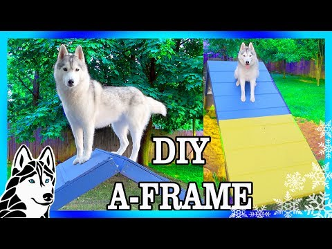 DIY AGILITY A-FRAME For Backyard Agility | Build An Agility Course