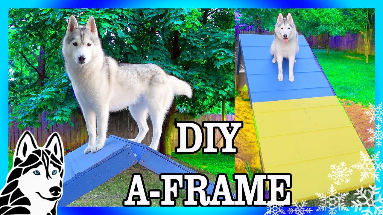 DIY AGILITY A FRAME For Backyard Agility | Build An Agility Course