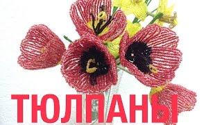Тюльпаны из бисера. Beaded tulips. Мастер-класс по бисероплетению.(Цветы из бисера. Мастер-класс по бисероплетению. Biseropletenie Tulips out of beads., 2014-05-19T08:57:34.000Z)