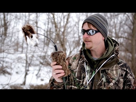 Mojo Critter Electronic Predator Hunting Decoy Product Review