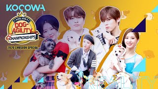Download lagu The idols love their dogs! [2020 Idol Star Dog Agility Championships]