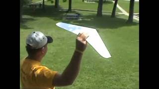 Flight of the OmniWing Paper Airplanes