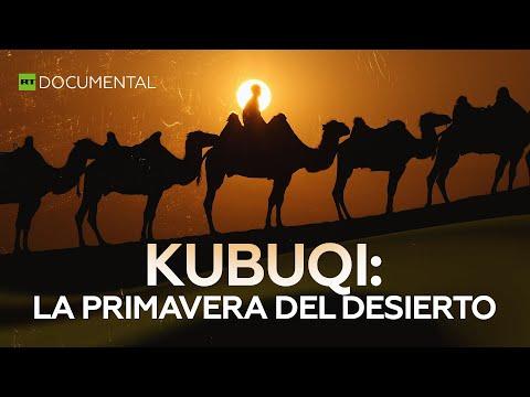 Kubuqi: la primavera del desierto