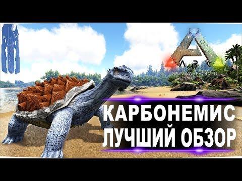 Карбонемис (Carbonemys) в АРК. Лучший обзор: приручение, разведение и способности черепахи в Ark.