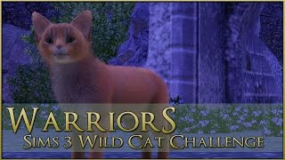 The First Steps of Fear || Warrior Cats Sims 3 Legacy - Episode #49