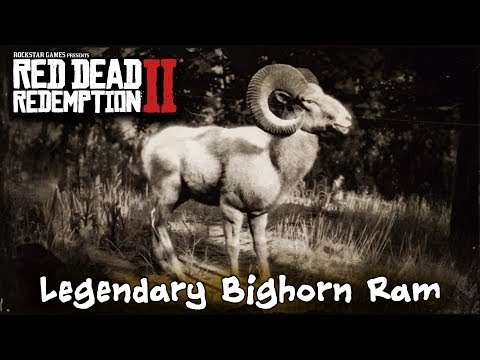 How To Kill The Legendary Bighorn Ram  -  Red Dead Redemption 2