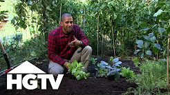 How To Grow a Vegetable Garden | HGTV Gardening