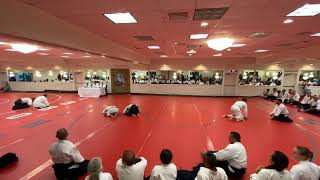Aikido video from USAF Winter Camp 2019