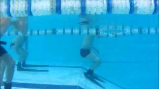 Обучение апное в бассейне www.divesvg.ru