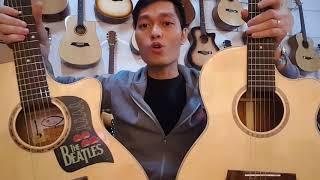 Gỗ thịt và gỗ ép. FS2 và ET25. Guitar phù hợp nhất cho người tập