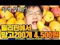 Mukbang 망고 200개 먹방 / 200 mangoes for $ 4  [ 공대생네 가족 ]