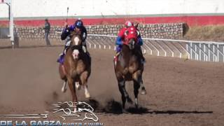 EL VALENTINO VS EL JUAN MARTHA 325 VARAS SANTA ISABEL RACE TRACK, CHIHUAHUA 28 ENERO 2017