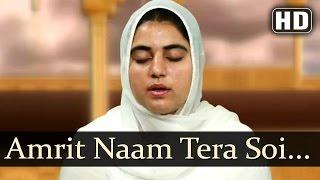 amrit naam tera soi gaveh bhai onkar singh una sahib wale