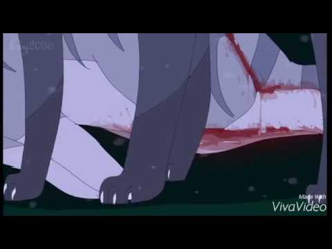 Коты-Воители Крутобок и Серебрянка - Катились слёзы на холодный кафель