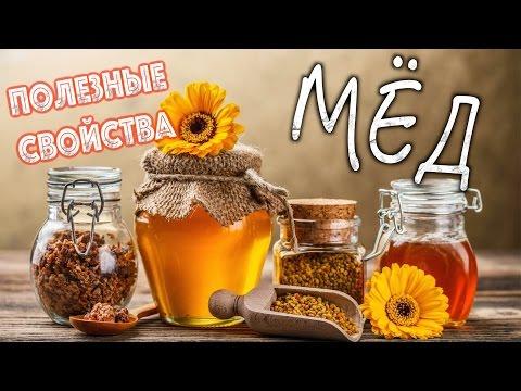 Какой бывает мёд Определение качества меда Как хранить