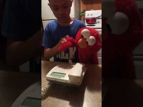 Elmo books a flight to Washington DC