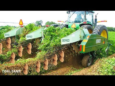 Peanut Harvesting Machine - How to Harvest Peanut in Farm modern agriculture 2018