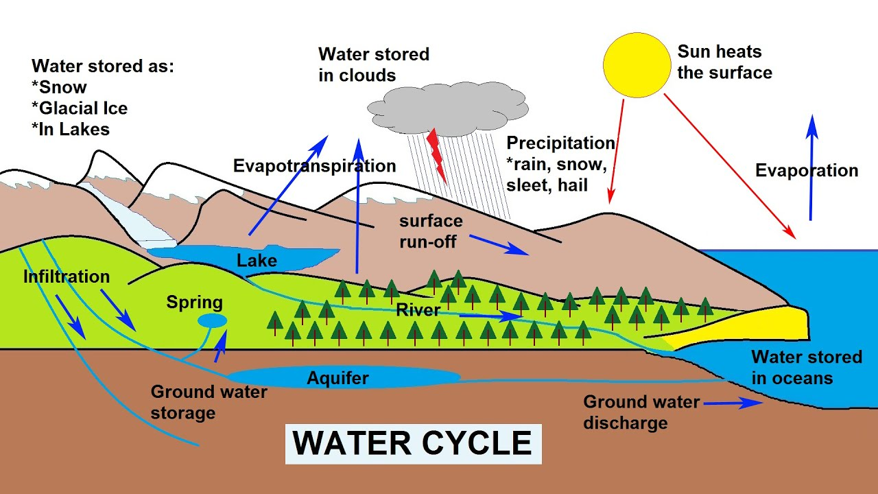 the water cycle explained [ 1280 x 720 Pixel ]