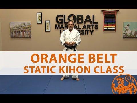 Shotokan Karate Follow Along Class - 7th Kyu Orange Belt - General Class
