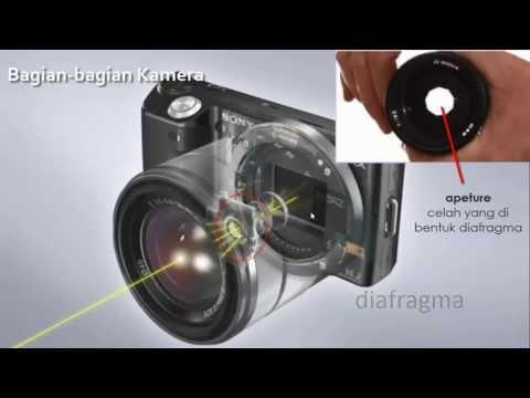 Alat Optik Kamera Dan Luv