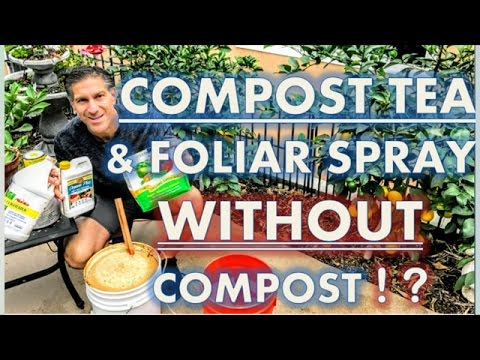 Compost Tea WITHOUT Compost!   |  YEAR-ROUND Nutritional Foliar Spray  |  SCALE Pest Control
