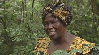 Wangari Maathai Tribute Film