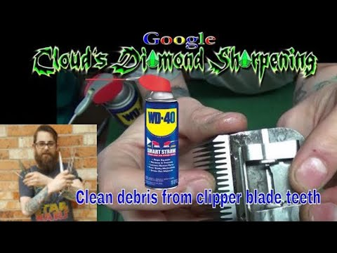 How to clean the teeth of a clipper blade with WD-40