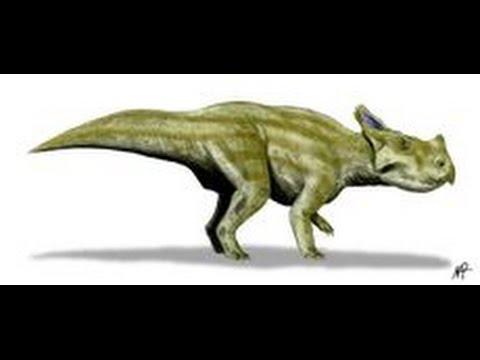 Montanoceratops | Enciclopedia sobre Dinosaurios