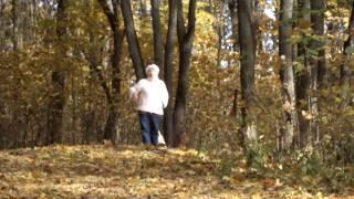 Прогулка в осенней роще.Знаменка  ,Курск.
